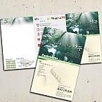 이미지주보_포도나무